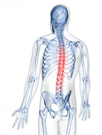 Best Toronto Chiropractor: How to Find The Best Chiropractor In Your City